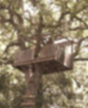 treehouse_edited.jpg