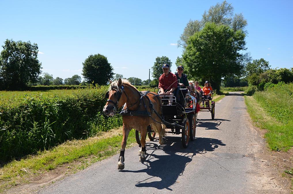 Les Routes du Maroilles 2015  C5af3a_15f1b9d7381644d6a0a5b793a8ada55b.jpg_srb_p_1018_674_75_22_0.50_1.20_0