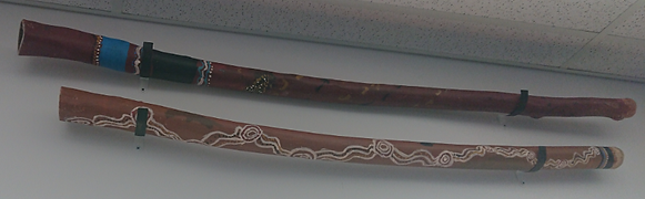 Didgeridoo Pic 2.png