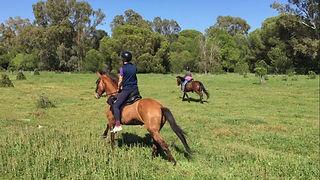 Montar a caballo en Donana
