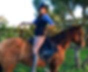 Balade a cheval, monter a cheval, toursime equestre, plage, el rocio, donana, matalascanas, andalousie