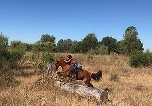 balade a cheval doñana