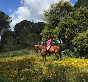 Montar a caballo donana el rocio matalascanas