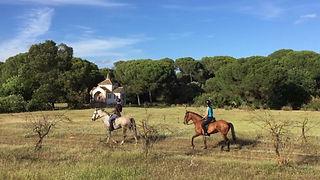montar a caballo doñana