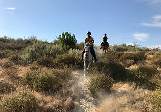 Balade a cheval plage matalascanas, galoper sur la plage