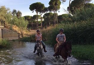 rutas a caballo en donana