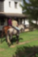 paseo a caballo por el rocio, caballos españoles Huelva
