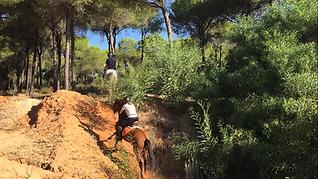 Monter a cheval Doñana, cheval espagnol