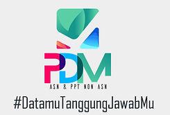PDM.jpg