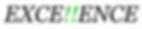 logotipo excellence modelo 1 - fundo bra
