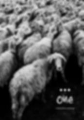 Ellipsis Zine One Book Cover