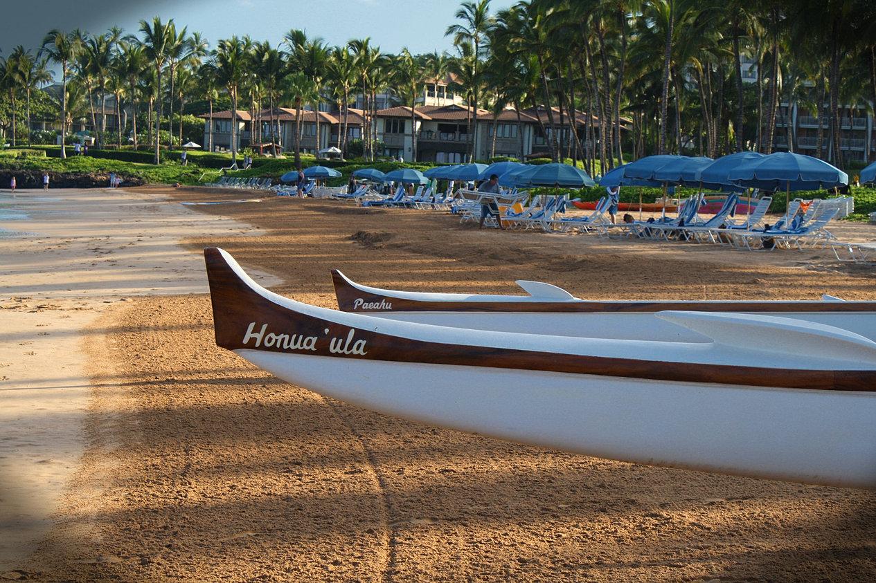 C Lion Outrigger Canoe Hawaiian Outrigger Exp...