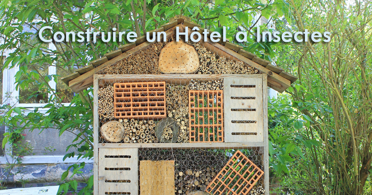 Favori Construire un Hôtel à Insectes | So Bio, So Local, So Positive IH22