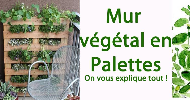 Gut bekannt Mur végétal en palettes : On vous explique tout !!! | So Bio, So  WD64