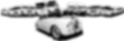 Limousine Rental fleet