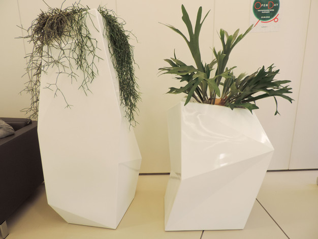 живые растения расположены по всему офису