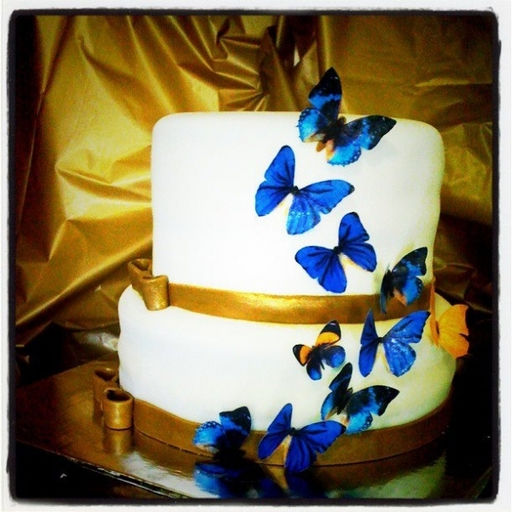 Wix.com Lu Barros Cake created by barrosluciana based on ...