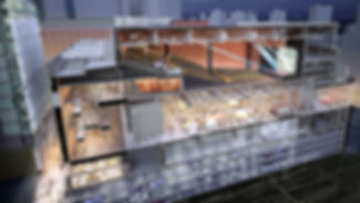 BIM NZ Building Information Modelling MEP