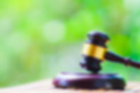 裁判写真.jpg