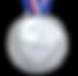 runner up medal_edited.png