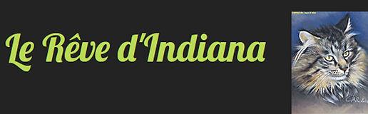 rêve-d'indiana.jpg