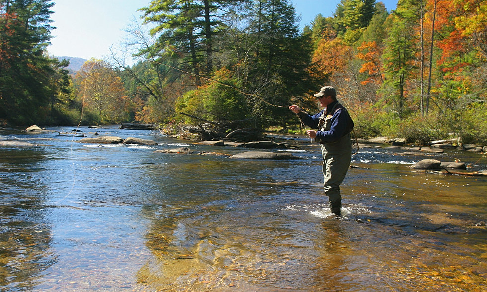 Hulsey fly fishing david and becky hulsey for Fly fishing north georgia