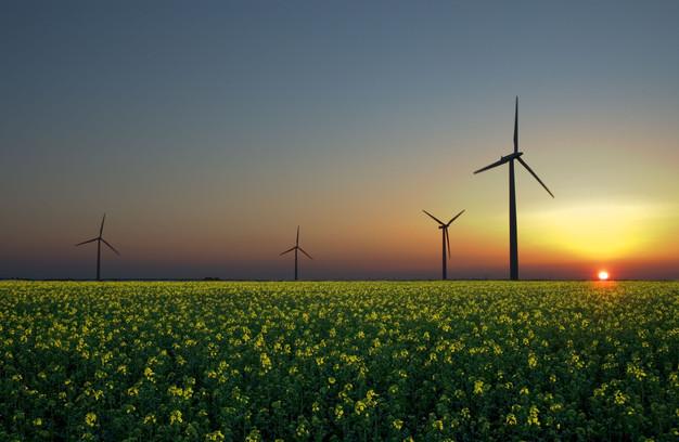 La Transici? Energ?tica com a font d'ocupaci? local digne i sostenible