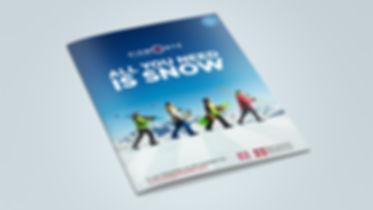 DMO - Leaflet.jpg