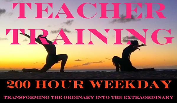 Yoga Teacher Training - 200hr Certification - Flow Yoga NJ