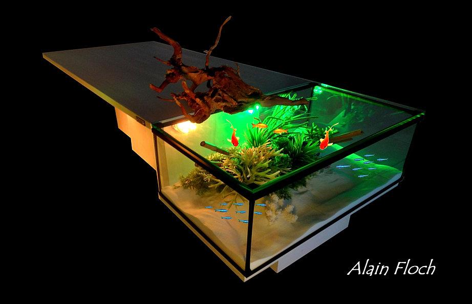 conseil s aquarium terrarium vivarium table basse poissons tortues. Black Bedroom Furniture Sets. Home Design Ideas