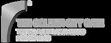 DGS_Logo_english___edited.png