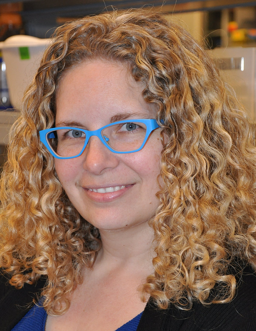 Brown university biology honors thesis
