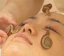 Massageescargot.jpg