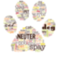 Spay and Neuter 2019.png