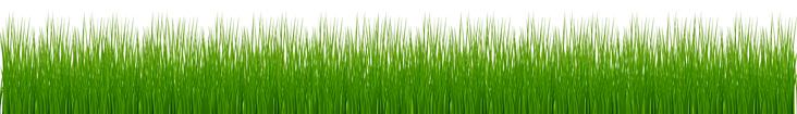 grass-clipart-png-format-5.png