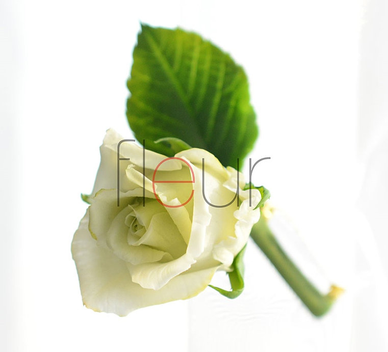 Мастер класс fleur холодный фарфор