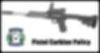 APC Pistol Carbine Policy