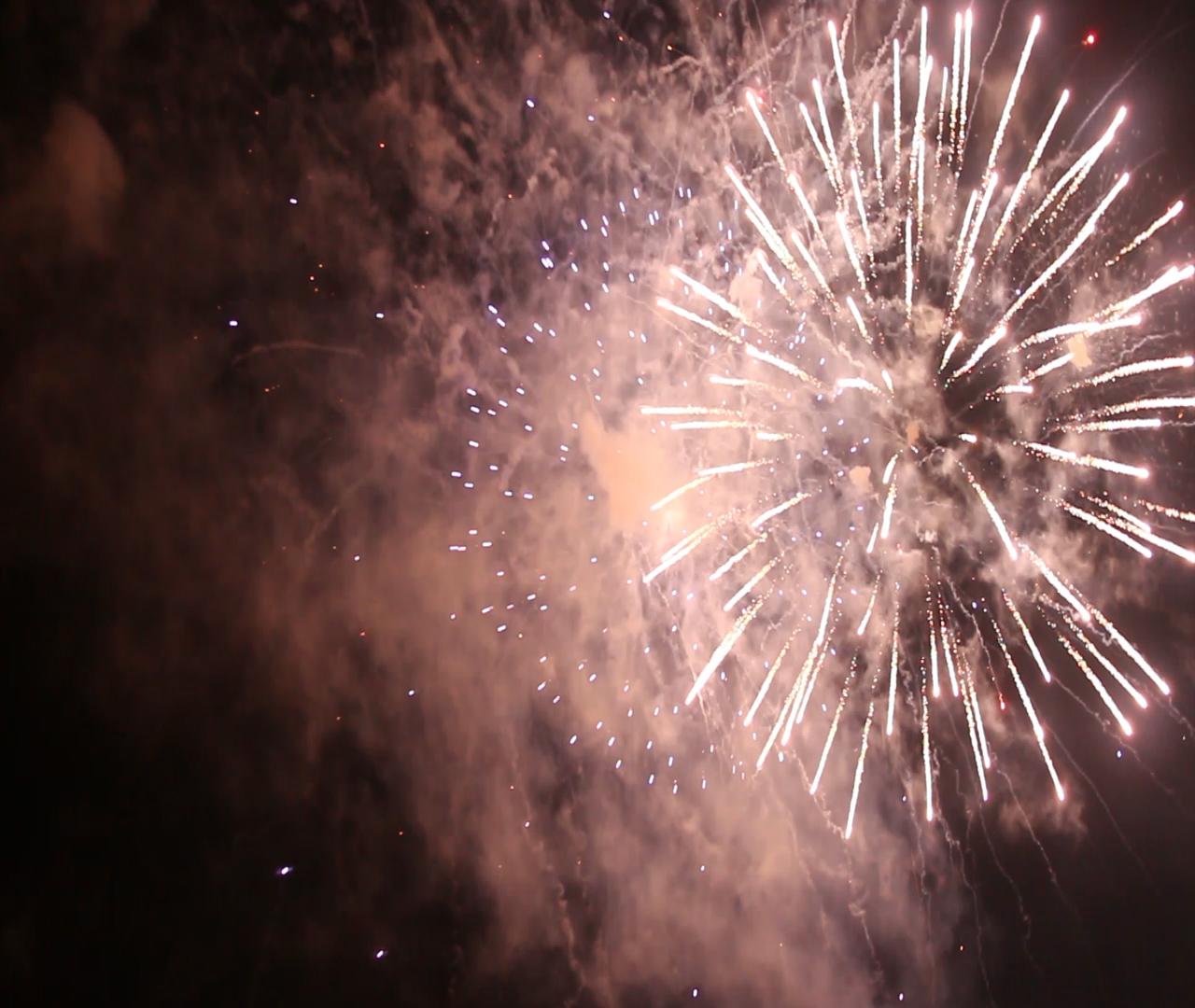 feu d artifice lyon