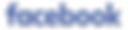 Facebook_logo_text_wordmark.png