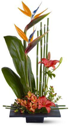 tidbits floral bofp