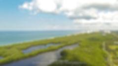 Pelican Bay Aerial Naples Florida
