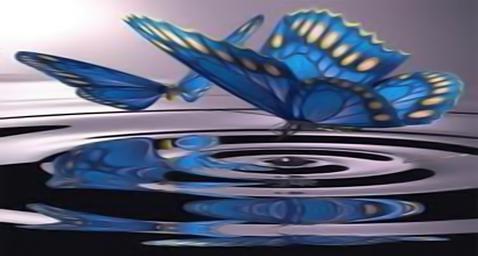borboletas+logo+2.png