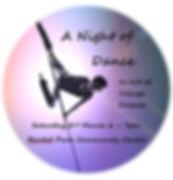 A_Night_of_dance_pole_passion.jpeg