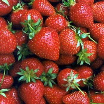 strawberries-614.jpg