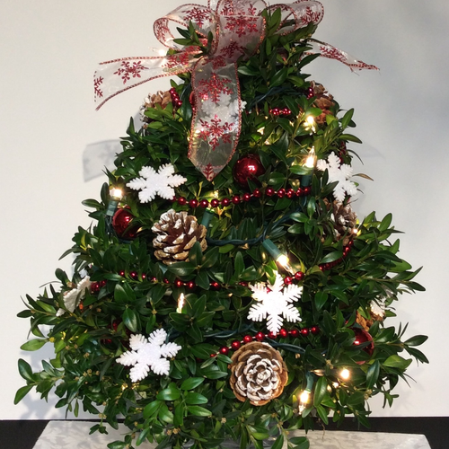 Christmas by endless decorated boxwood trees