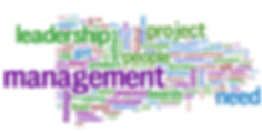 management_wordle.png