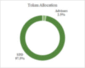 Token Allocation_.png