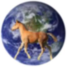 HFF foal across planet no text.jpg