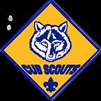 Cub Scouts2.png