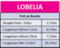 Lobelia.png